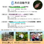 6月活動予定_20150521_01