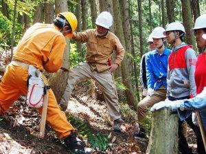 森林整備5月