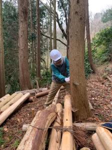 森林整備20200112_200117_0010