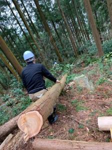 森林整備20200112_200117_0003