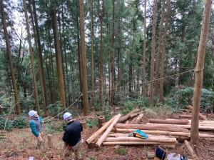 森林整備20200112_200117_0005