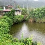ため池調査 風景